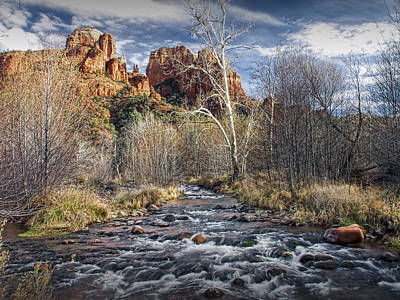 Cathedral Rock In Sedona Print by Randall Nyhof