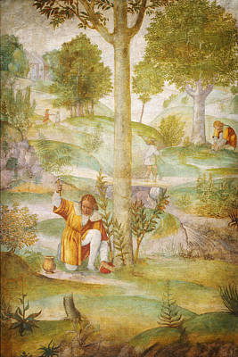 Immaculate Painting - Cephalus Hiding The Jewels by Celestial Images