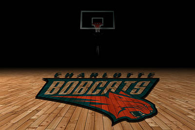 Bobcat Photograph - Charlotte Bobcats by Joe Hamilton