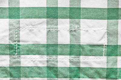 Checked Cotton Print by Tom Gowanlock