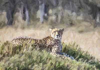Cheetah Digital Art - Cheetah Acinonyx Jubatus by Liz Leyden