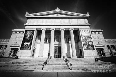Chicago Field Museum In Black And White Print by Paul Velgos