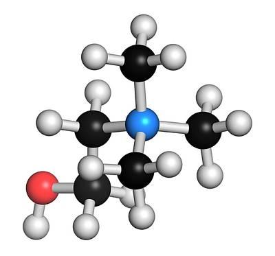 Choline Essential Nutrient Molecule Print by Molekuul