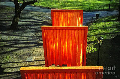 Christo - The Gates - Project For Central Park Print by Nishanth Gopinathan