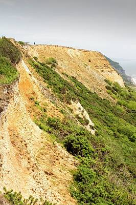 Coastal Cliff On The Jurassic Coast Print by Ashley Cooper