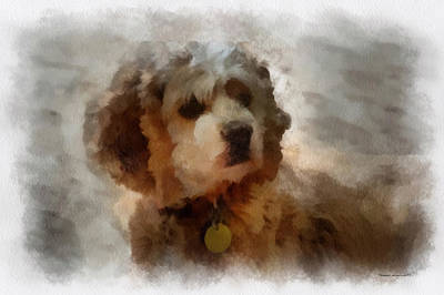 Woodcock Digital Art - Cocker Spaniel Photo Art 01 by Thomas Woolworth