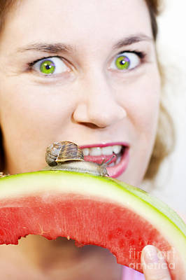 Watermelon Photograph - Consuming The Consumer by Jorgo Photography - Wall Art Gallery