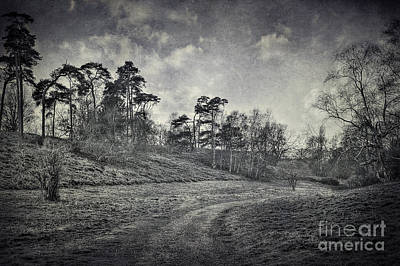 Country Road Print by Svetlana Sewell