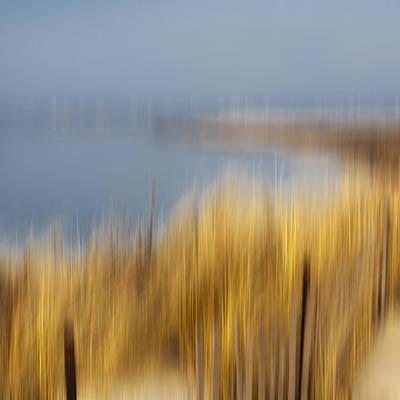 Cupsogue Beach II Print by Bob Retnauer