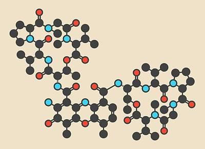 Cancer Photograph - Dactinomycin Cancer Drug Molecule by Molekuul
