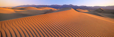 Windblown Photograph - Death Valley National Park, California by Panoramic Images