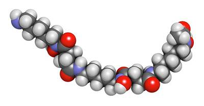 3-dimensional Photograph - Deferoxamine Drug Molecule by Molekuul