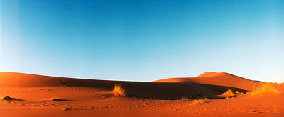 Desert At Sunrise, Sahara Desert Print by Panoramic Images
