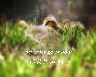 Motivation Photograph - Dreams by Bill Wakeley