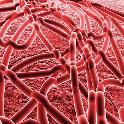 Ebola Virus Print by Mehau Kulyk