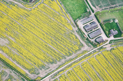 Birds Eye View Photograph - English Farm by Tom Gowanlock