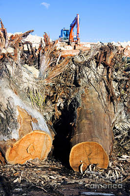 Deconstructed Photograph - Environmental Destruction In Construction  by Jorgo Photography - Wall Art Gallery
