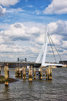 Erasmus Bridge In Rotterdam Print by Artur Bogacki