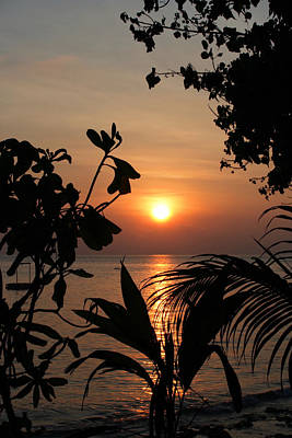 Seascape Photograph - Evening Sun by Elizabeth Lock