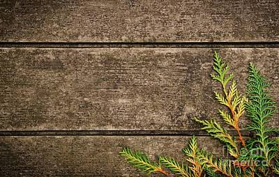 Old Plank Tables Photograph - Fall Background by Carlos Caetano