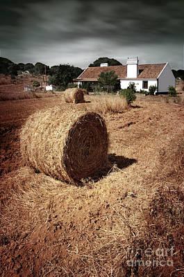 Gathered Photograph - Farmland by Carlos Caetano