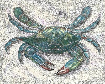 Drawing - Feeling Crabby by Stephany Elsworth