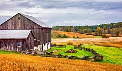 Field Of Crops Photograph - Fields Of Gold by Steve Harrington