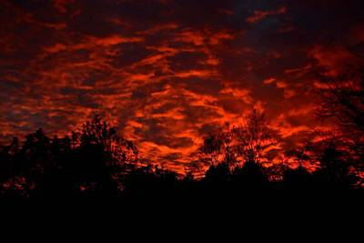 Vivid Fall Colors Photograph - Fire In The Sky by Deena Stoddard
