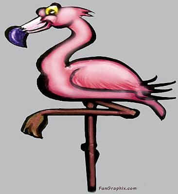Pink Digital Art - Flamingo by Kevin Middleton