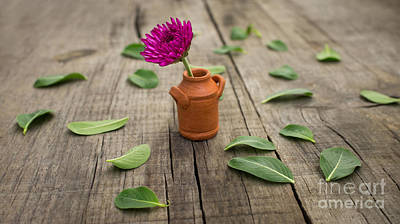 Natural Wood Photograph - Flower Pot by Aged Pixel