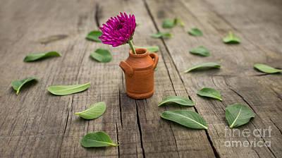 Miniature Photograph - Flower Pot by Aged Pixel