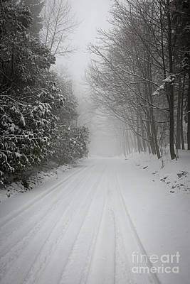 December Photograph - Foggy Winter Road by Elena Elisseeva