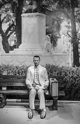 Beloved Photograph - Forrest Gump by Mountain Dreams