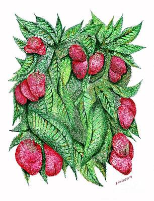 Fruits And Green Leafs Pen And Ink Drawing Print by Mario Perez