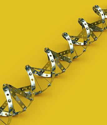 Heredity Photograph - Genetic Engineering by David Parker