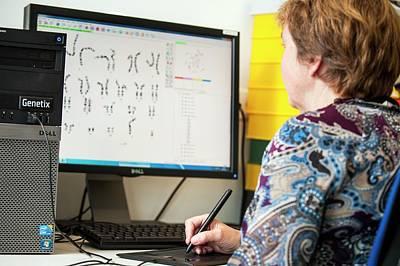 Leiden Photograph - Genetic Karyotype Analysis by Arno Massee