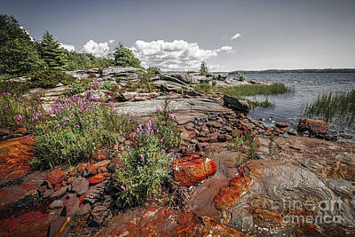 Parry Sound Photograph - Georgian Bay Iv by Elena Elisseeva