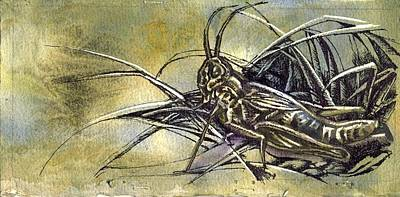 Grasshopper Mixed Media - Grasshopper by Alfred Ng