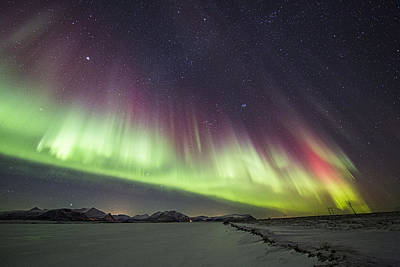 Aurora Photograph - Green And Purple Auroras by Frank Olsen