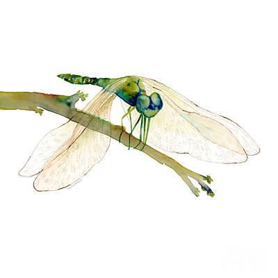 Green Dragonfly Original by Amy Kirkpatrick