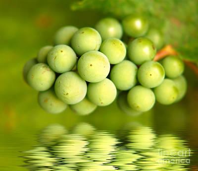 Vine Photograph - Green Grapes by Michal Bednarek