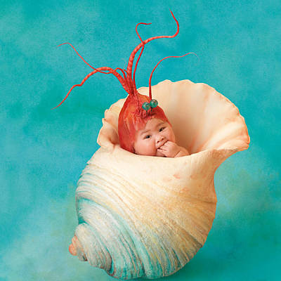 Halle As A Baby Shrimp Print by Anne Geddes