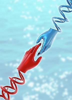 Hands With Double Helix Print by Victor Habbick Visions