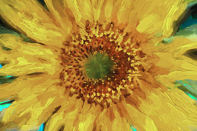 Digital Sunflower Photograph - Hannahs Sunflower  by Rich Franco