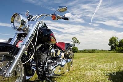 Harley Davidson Photograph - Harley Davidson by Tim Gainey