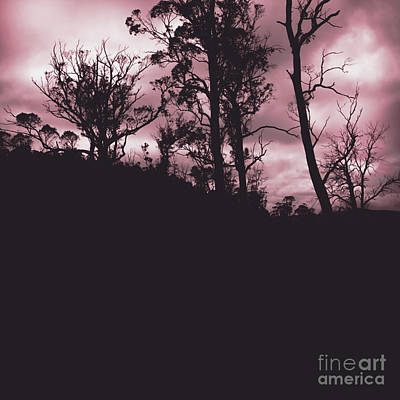 Haunted Horror Forest In Twisted Red Darkness Print by Jorgo Photography - Wall Art Gallery