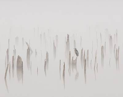 Heron On A Foggy Day Print by Billy  Griffis Jr