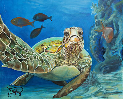 Fish Underwater Painting - High Five by Jessica Shipley