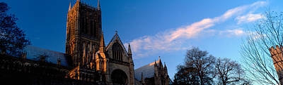 Bare Trees Photograph - High Section View Of A Cathedral by Panoramic Images