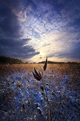 Bluesky Photograph - Holding On by Phil Koch